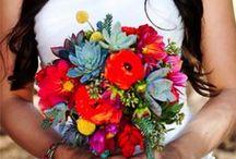 Casamento, Bouquet, Noivas / Casamento e organização da festa.