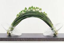 Floral designe / by Jacqueline van Oosten