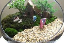 TERRARIOS / Jardines en miniatura.