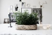 Interior Magic  / Things that would make a house a home!!!  / by Mands