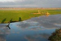 Les marais du Cotentin et du Bessin / Quelques clichés des marais à proximité du gîte.