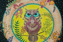 Meu Jardim Secreto-Livro de Colorir / Minhas Pinturas ❤