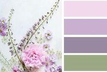 Ideas. Color Palettes