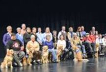 Graduation / Celebrating our dogs that have graduated from Helping Paws and have been placed with their new human partner.