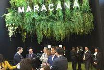 Café Maracaná / De la región brasileña de Minas Gerais, en pleno corazón del Cerrado, hemos seleccionado cuatros exquisitos cafés procedentes de pequeñas fincas.