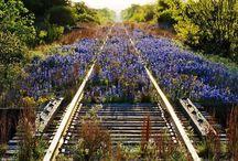 -: Old Railroad Tracks :- / Sad... but amazing !! / by Sherry Jensen