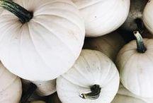 Fall / Fall food, fashion and fun!