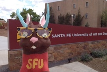 Jackalopes / Do you have a Jackalope for us?  These eternal tricksters are our school mascot!  You can see them all dressed up if you visit the Jackalope section of our facebook page: https://www.facebook.com/santafeuniversity/app_437503019614329