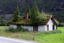 Maisons et nature / Découvrez les maisons qui allient respect de la nature et créativité