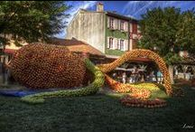 Mirepoix - Ariège - Midi-Pyrénées / Photos de Mirepoix en Ariège