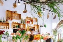 Indoor Garden / Indoor plants and garden inspiration to bring your rooms to life!