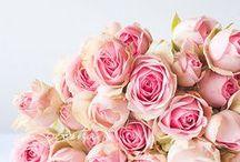 FLOWERS / by ANGEL K.