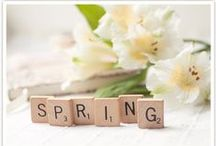 Spring Decor / Fresh Spring decorating ideas, trends and inspiration for your home.