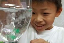 Sunday School Science / Sunday School science activities that help support object lessons.