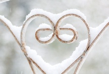 Let it snow ♥ / by Nicole Bautz