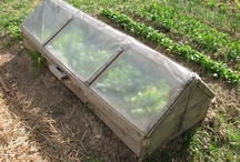 Farming/Homesteading