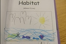 Kindergarten Language Arts / by Baleigh Davis