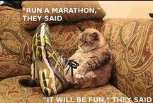 Run for Fun!! / by Brook Kerry