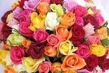 ✿ Bouquet ✿