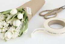 Flowers | Blumen | Bloom / flower obsessed