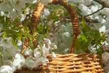 Baskets for gifts / Beautiful baskets in which to present your presents...