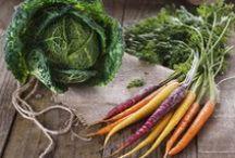 Wintergemüse / Leckeres Gemüse zur kalten Jahreszeit