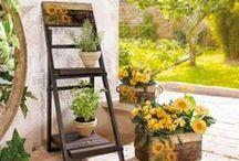 Country-Garden / Alles was Du für den Style eines Country-Gardens brauchst