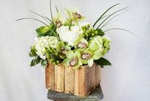 HEPATICA Arrangements / A sampling of our everyday floral arrangements and creations.