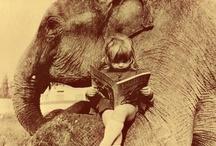 E for ... Elephants / His Majesty ...
