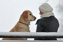 Pets make life worth living ♥ / by Brenda Lock