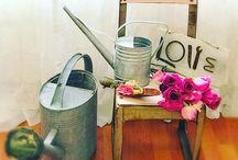 Watering Can Can! / My shabby way to water my flowers!