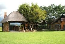 Slievyre Game Farm / Set in the beautiful bushveld of the Natal Midlands, 10kms from Estcourt and the N3. Slievyre - A private nature reserve - provides the perfect place for family reunions, quiet holidays, romantic getaways or just an overnight stop. The camp is situated in one hectare of fenced mature lawn gardens and consists of five traditionally built stone and thatch chalets.  http://www.go2global.co.za/listing.php?id=1399&name=Slievyre+Game+Farm