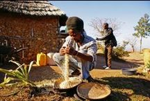 Woza Nawe Hostel / Swazi village visits are offering a unique experience for travelers who want to meet the local people in a non-touristic environment.   http://www.go2global.co.za/listing.php?id=1204&name=Woza+Nawe+Hostel