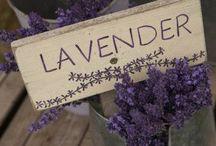Lavender, Rosemary & Thyme.......
