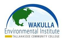 Our Classes / We offer Environmental Science classes, diving classes, drones, and our Green Guide Certification Program.  www.tcc.fl.edu/greenguide  / by Wakulla Environmental Institute