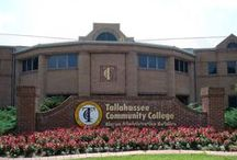 Tallahassee Community College / by Wakulla Environmental Institute