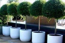 - planters - / Indoor & Outdoor Planters