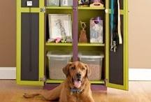 Organizing Pets