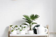 MINIMALIST SCANDINAVIAN INTERIOR DESIGN / White, black, wood, and plant || minimalist interior designs || clean, airy, geometric designs