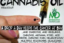 ❤️ Cannabis oil, Hemp, Medical marijuana ❤️ / Cannabinoids attack cancer!!