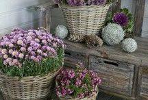 Decor Jardins, com reaproveitamento / reciclagem de materiais / Adoro reciclar e reaproveitar... em vez de deitar fora e comprar novo...