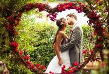 Set the Scene / Photo Backdrops, Wedding and Party Decorations