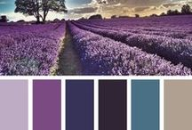 Lavender and Lilac / Calming environments