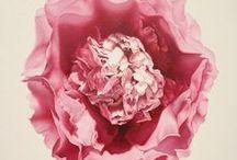 Margaret Emsley / Emsley Art