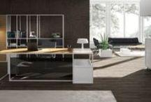 Executive rooms/ Yönetici Odaları / Çağdaş, ferah ve konforlu ortamlar yaratan Ersa Yönetici Odaları, kişiselleştirilebilen tasarımlarıyla bu önemli pozisyona özgünlük katıyor.   Yöneticinin başarısını ve tarzını yansıtacak mobilyalar sunan Ersa, ürünlerinin çok fonksiyonlu yapısıyla hayatı kolaylaştırıyor.