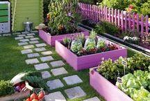 сад=огород