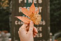Fall / Favorite Season :)✨
