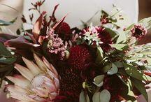 Burgundy Floral Wedding