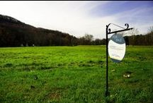 Land Listings / Looking to build? Check out our vacant land listings.
