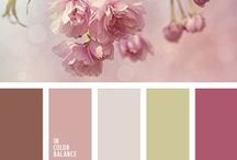 Color Palettes We Love